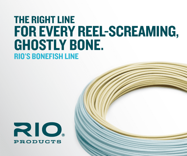 rio coastal quickshooter fly line review