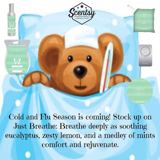 just breathe scentsy bar review